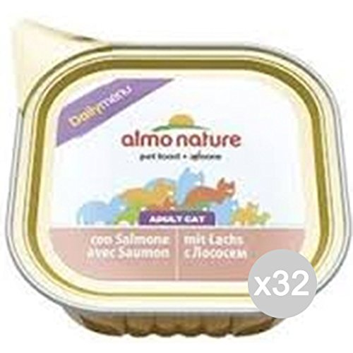 Almo nature Set 32 Gato 352 Bandeja Gr 100 Daily SNE Comida para Gatos: Amazon.es: Productos para mascotas