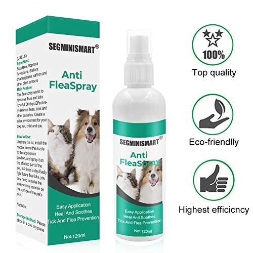 🥇 SEGMINISMART Pulgas Spray