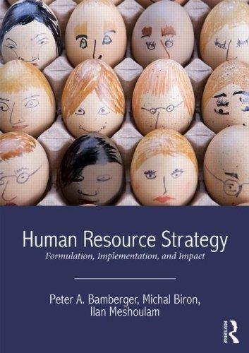 Human Resource Strategy, Formulation, Implementation, And Impact, 2/Ed. (Human Resource Strategy Formulation Implementation And Impact)