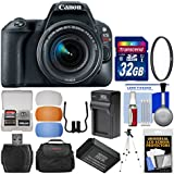 Canon EOS Rebel SL2 Wi-Fi Digital SLR Camera & EF-S 18-55mm is STM Lens (Black) 32GB Card + Case + Battery & Charger + Tripod + Filter Kit