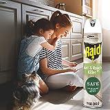 Raid Ant and Roach Killer, Aerosol Spray with