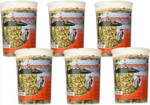 Case Pack of Pine Tree Woodpecker Classic Seed Logs, 4.75 lbs. each ()