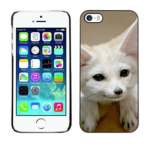 Omega Case PC Polycarbonate Cas Coque Drapeau - Apple iPhone 5 / 5S ( Cute Fennec Fox )
