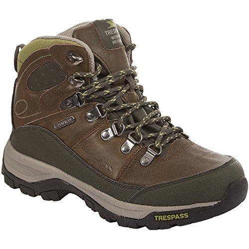 Trespass - Botas de montaña / Caminar técnicas Modelo Tarn Mujer Señora - Walking/Trekking/Hiking Tierra