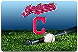 GameWear Cleveland Indians Baseball Pet Bowl