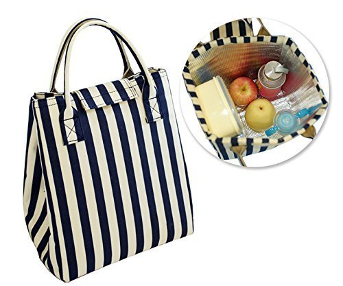 Sunptoo Insulated Lunch Bag - Stripe Pattern - Waterproof Lunch Tote (Gallery Lunch Tote)