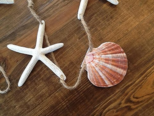 Seashell-Starfish-Twine-Coastal-Beach-Decor-Garland