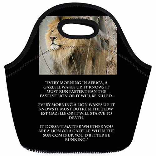 Chablis Box - Ahawoso Reusable Insulated Lunch Tote Bag Words Lion Gazelle Running Live Wisdom Inspirational Zippered 10X11 Neoprene School Picnic Gourmet Lunchbox