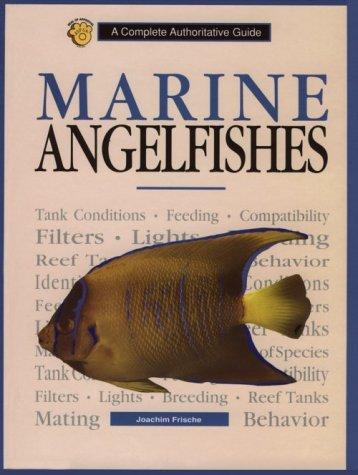 Marine Angelfishes