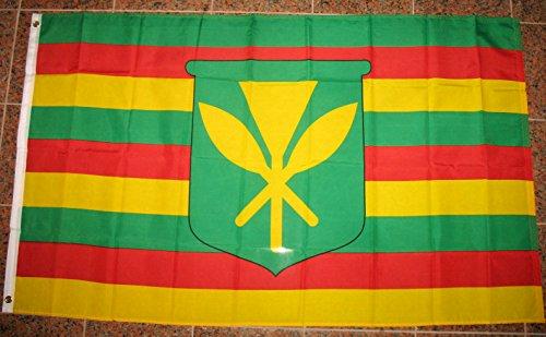 Hawaiian Flag (Kanaka Maoli Flag 3'x5' Hawaiian Banner)