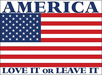 """American Love it or Leave it Large Decal 16/"""" Free Shipping"""