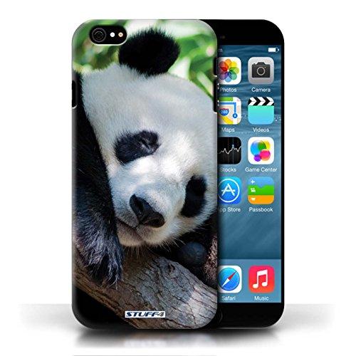 Kobalt Panda stampato Custodia Cover per Apple iPhone 6/6S cellulari telefoni / Collezione Animali selvatici