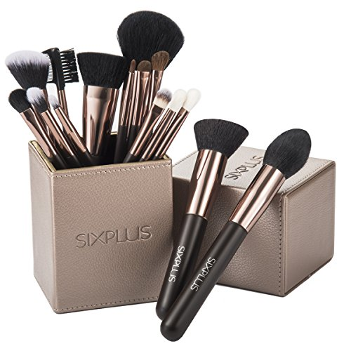 SIXPLUS 15Pcs Coffee Makeup Brush Set with Makeup Holder (Coffee) (Best Quality Makeup Brush Sets)