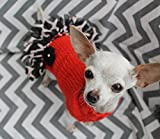 Soft Merino Wool Teacup Dog/Puppy Sweater Dress XXS/XS 2 to 4 Lbs Orange w/Animal Print Giraffe Chiffon Ruffle for Chihuahua Yorkie Maltese