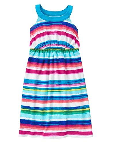 Gymboree Big Girls' Short Sleeve Ballet Dress, Multi, L