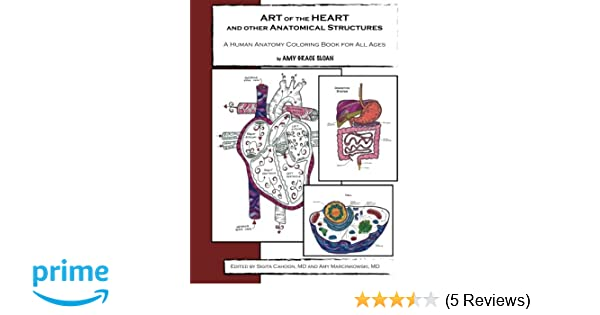 Amazon ART Of The HEART And Other Anatomical Structures A Human Anatomy Coloring Book 9781505819731 Amy G Sloan Sigita Cahoon MD Marcinkowski