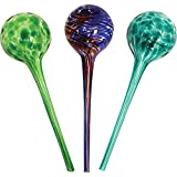 Wyndham House House System 3-Piece Globe Set,Colorful Hand-Blown Glass Plant Water