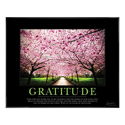 25 In. black Aluminum Frame, No Mats - Gratitude cherry Blossoms Motivational Poster