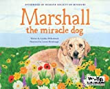 Image of Marshall the Miracle Dog