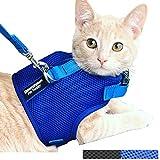 Downtown Pet Supply - Arnés y correa para gato con características de seguridad añadidas para que sea a prueba de escapes para gatos pequeños, medianos, grandes y pequeños perros/cachorro (disponible en azul y negro), Azul, Pequeño