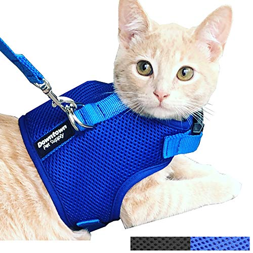 Downtown Pet Supply Best Cat Vest Harness and Leash Combo with Added Safety Features to Make it Escape Proof for Small, Medium, Large Cats and Small Dogs/Puppy (Blue, Large) from Downtown Pet Supply