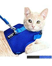 Downtown Pet Supply Cat Vest Harness and Leash Combo with Added Safety Features to Make it Escape Proof for Small, Medium, Large Cats and Small Dogs/Puppy (Blue, Large)