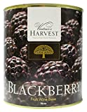 Vintner's Harvest Fruit Bases blackberry
