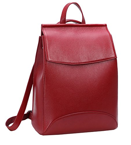 - Heshe Womens Leather Backpack Casual Style Flap Backpacks Daypack for Ladies (Wine-R)