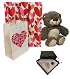 Valentines Day Gifts for Girls Set, 14 Inch Plush Teddy Bear, Cute Glass Pendant Necklace, Gift Bags & Cards – The Best Valentine's Day Gifts for Girlfriend, Mom, Sister, Wife, Daughter (Light Pink)
