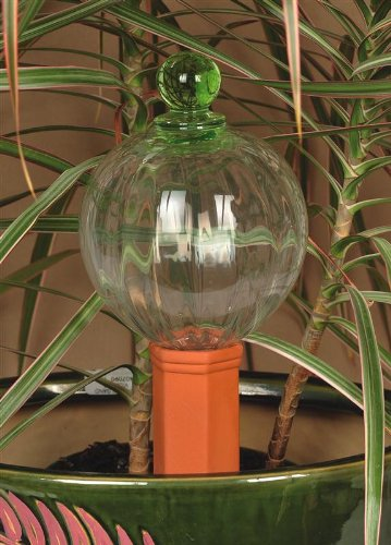 Cotta Finial Terra (12oz Glass Watering Globe with Decorative Green Finial & Terracotta Plant Nanny Watering System)