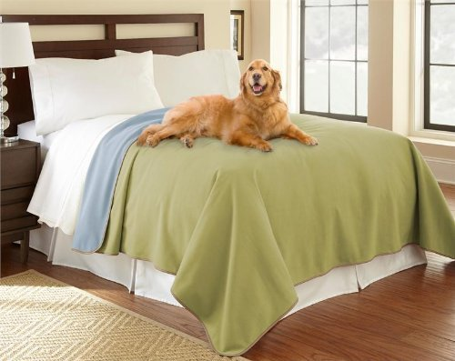 "100% Waterproof Mambe Furniture Cover for Pets and People (King/Queen 90""x 90"", Bamboo-SkyBlue)"