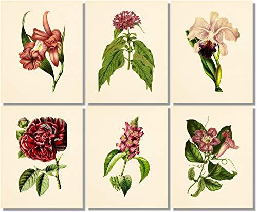Print Deco Floral - Flower Wall Art - Vintage Floral Decor (Set of 6) - 8x10 - Unframed - Botanical Prints - Burgundy