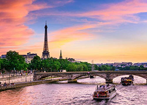 (Sunset View of Eiffel Tower, Seine River in Paris Backdrop for Photo Video Party)