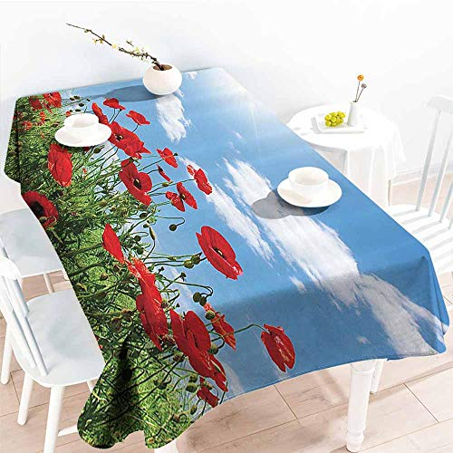 Homrkey Wrinkle Resistant Tablecloth Poppy Decor Collection Red Poppies on Green Field Grassy Sunshine Rays Wild Plants Herbs Botany Image Blue Red Green Picnic W54 xL84