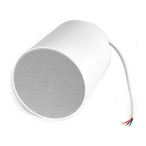 PYLE PRJS66W 6.5-Inch 40 Watts Ceiling Hanging Pendent Speaker With 70V Transformer