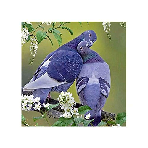 DIY 5D Full Drill Diamond Painting By Number Cross Stitch Diamond Mosaic Twig Couple Pigeon Painting Handmade Kits Diamond Embroidery Painting Handmade Wall Painting Wall Art