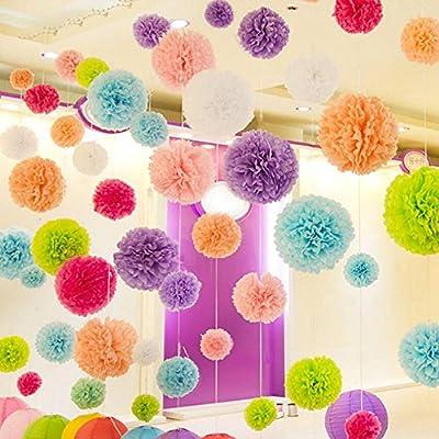 Amazon.com: Papel de seda pompones 10, 12, 14 inch Flor ...