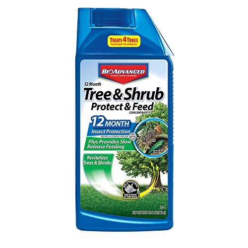 - Bio Advanced 701810 12 Month Tree and Shrub Protect and Feed Concentrate, 32-Ounce
