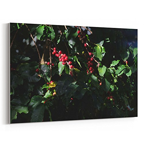 Westlake Art - Berry Floral - 24x36 Canvas Print Wall Art - Canvas Stretched Gallery Wrap Modern Picture Photography Artwork - Ready to Hang 24x36 Inch (Berry Floral Wallpaper)
