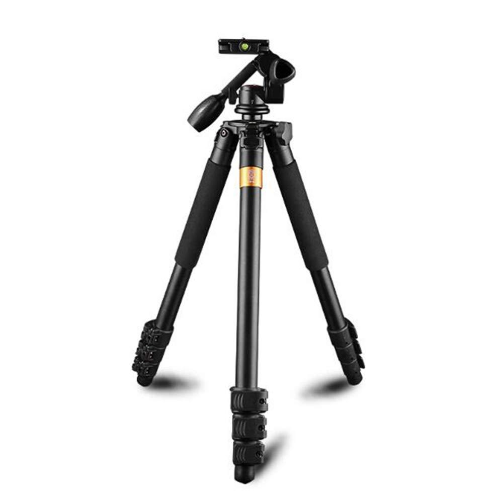 Qianlai プロフェッショナル アウトドア三脚 360度パノラマボールヘッド 軽量アルミカメラ三脚 キャリーバッグ   B07MZ3G6DM