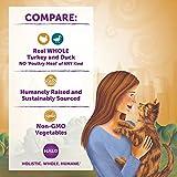 Halo Grain Free Natural Wet Cat Food, Indoor Turkey