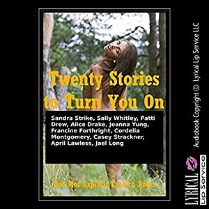 Twenty Stories to Turn You On Audiobook