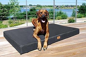 tierlando® ortopédico Perros Colchón Hugo Ortho Plus | M 80 x 60 cm | Anti de pelo poliéster | grafito gris: Amazon.es: Productos para mascotas