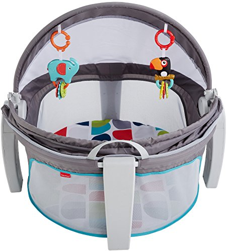 Fisher-Price On-the-Go Baby Dome, Grey/Geo [Amazon Exclusive]