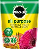 Miracle-Gro All Purpose Continuous Release Plant Food Tablets Bag, 25 x 5 g