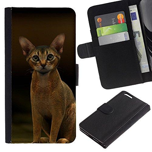 EuroCase - Apple Iphone 6 PLUS 5.5 - Abyssinian Javanese cat feline short - Cuero PU Delgado caso cubierta Shell Armor Funda Case Cover