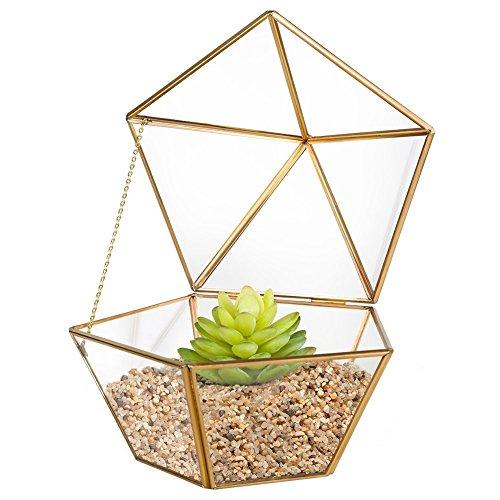 HOMEIDEAS Modern Geometric Terrarium Metal Faceted Tabletop Succulent Plants Holder Glass Air Plant Holder(Gloden) (Gold Terrarium)