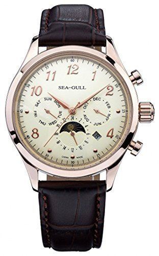 Luxury Sea-gull D2869sg Multi-function Automatic Mechanical Watches for Me