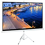 Best Portable Projection Screens - Cloud Mountain 100 Inch 16:9 Projector Screen Review