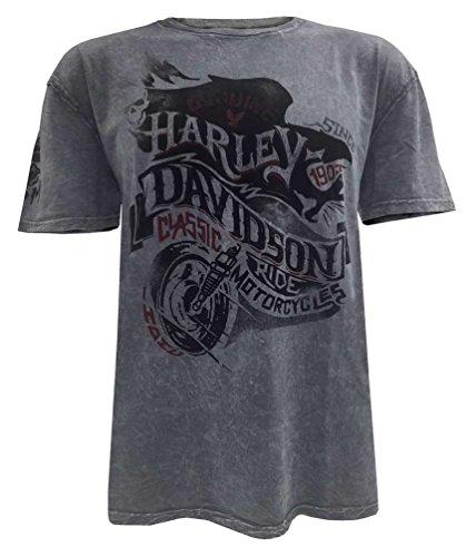 harley-davidson-mens-end-of-the-road-short-sleeve-washed-t-shirt-5j31-hb7j-l